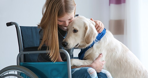 Assistance Animals: Are You Fair Housing Compliant?